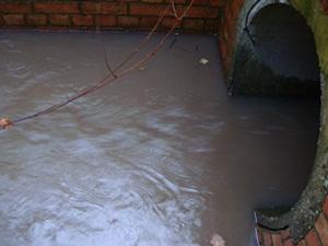 Hammond Pond inflow