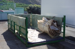 8-Fruit bunches are transported with care, noticed the mat