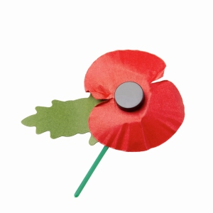 About those poppies on lamp-posts in our Borough