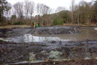 1-Hammond lower pond