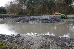 4-Hammond lower pond