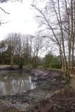 6-Hammond lower pond