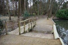 7-Hammond lower pond