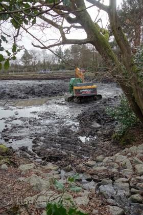 8-Hammond lower pond