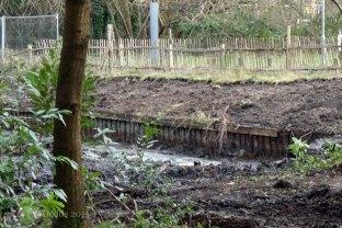 9-Hammond lower pond