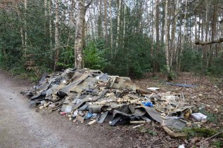 Fly tip_1