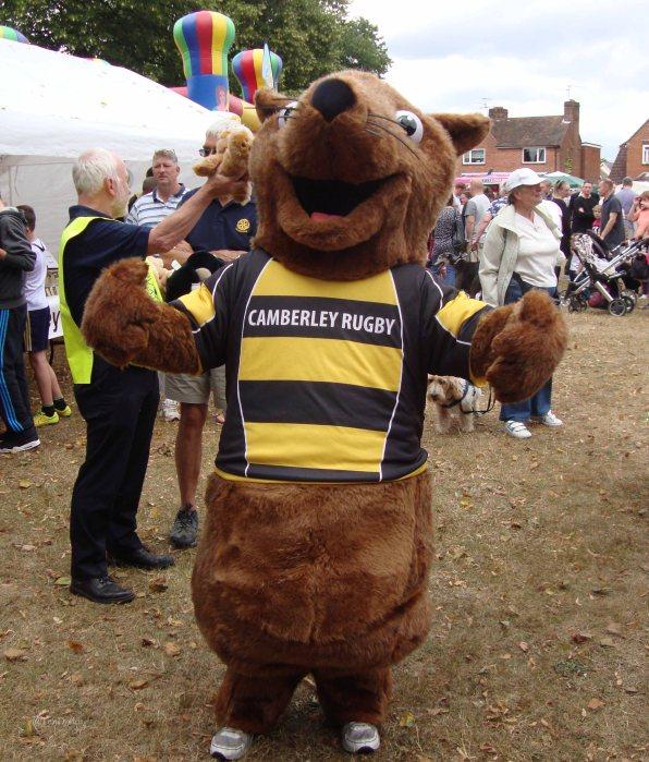 19-Cyril, Camberley Rugby Club mascot