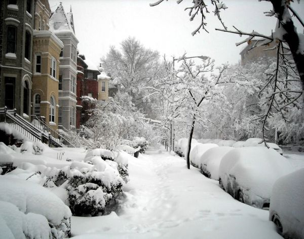 Block_of_19th_Street,_N_W__-_2010_blizzard in Washington