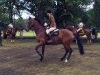 19-RLC equestrian dispaly