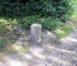 Boundary stone in Brentmoor Heath