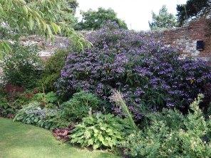 Greys Court walled garden_2