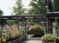 wyevale-garden-centre-image-from-spg