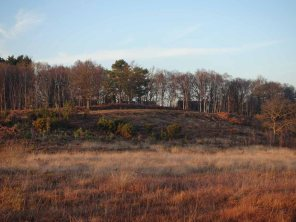 5-view-over-folly-bog-to-the-path
