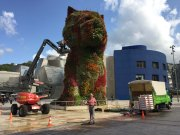 11-Puppy by Jeff Koons getting more flowers