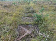 3-Perhaps once possible to cross Folly Bog