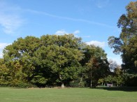 Windlesham FoR_3