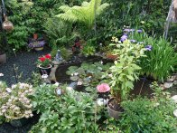 7-Frimley Green Gdns Open 2018 (7)