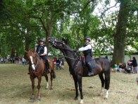 5-Police horses in Green Park