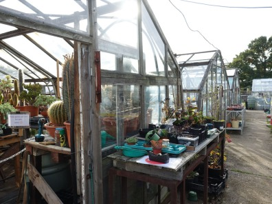 1-Greenhouses