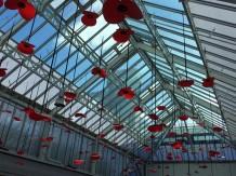 Cambridge Square hanging poppies