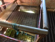 3-Inside the Eel House looking down onto the iron grill
