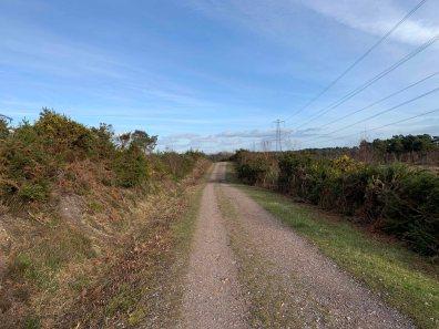 Heathland track_1