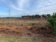 Heathland track_2