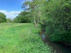 5-Chobham Water Meadows