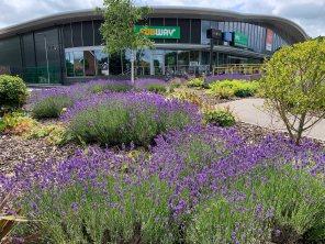 1-Bagshot retail park