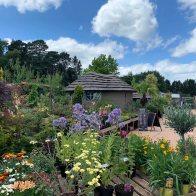 2-Windlesham Gardener_2